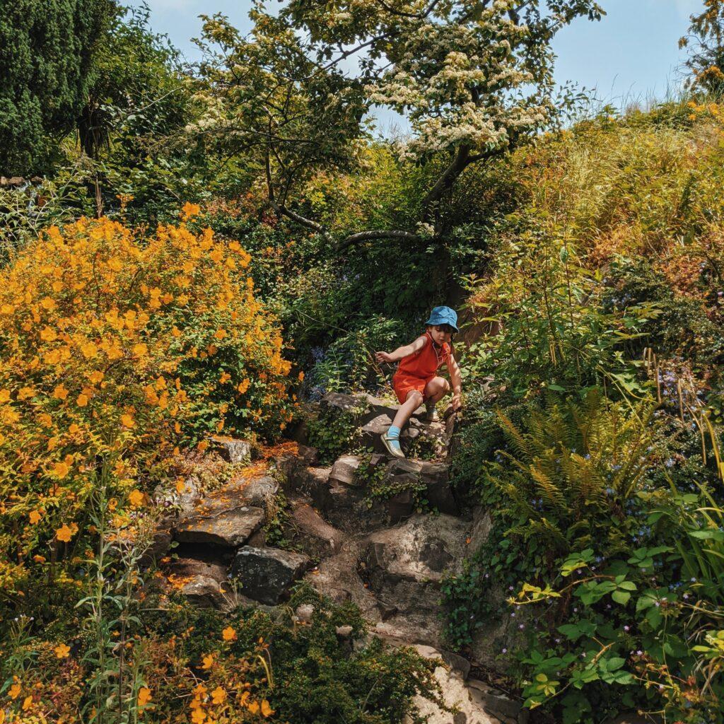Brandon Hill park Bristol visit 12